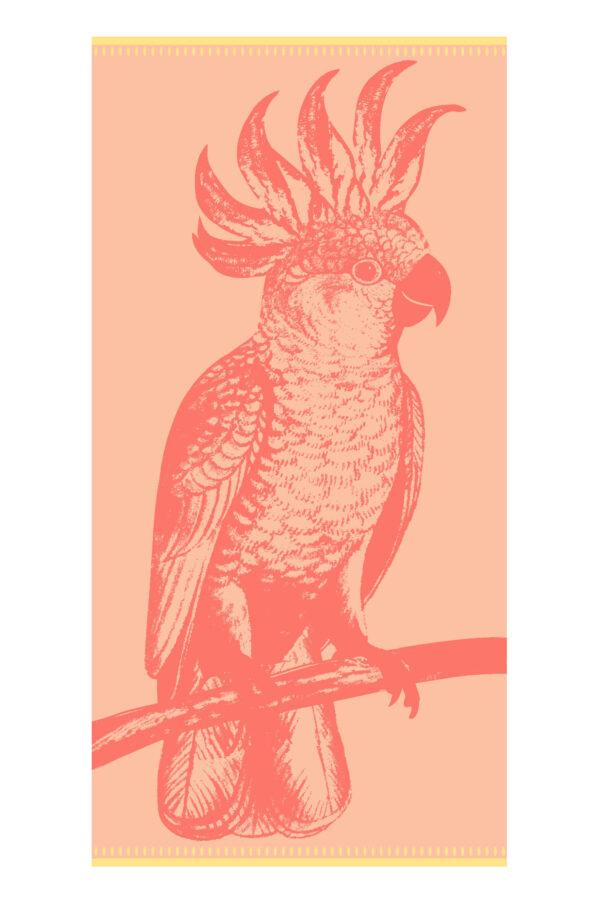 Paradise Bird scaled