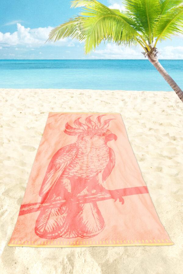 Paradise Bird 02 scaled